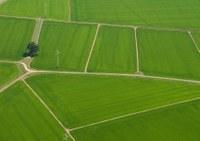 Prodotte le prime mappe S4A, risultato della sinergia tra ricercatori e agricoltori della Lomellina
